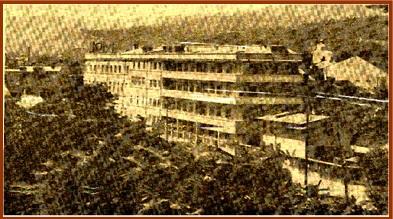 plantavorel-istoric-2